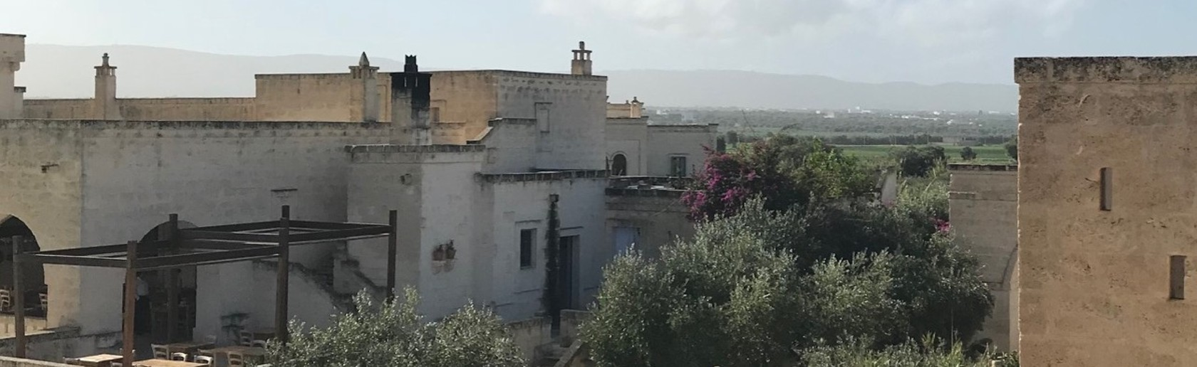 Engaging Community Practical Solutions banner image - Rooftop view of old buildings surrounded by flowering bushes and mountains in the background