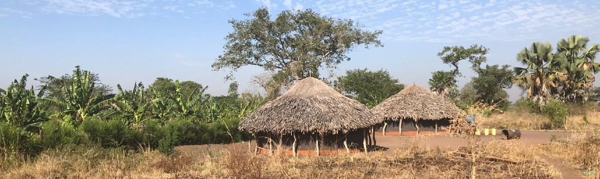 Two African huts in a clearing, surrounded by bushes and trees