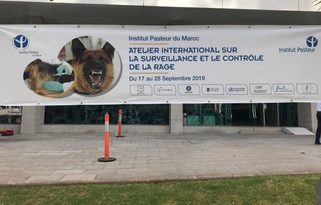Banner advertising Rabies Workshop Pasteur in Morocco