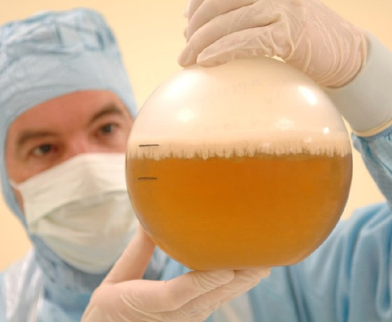 Focus On Production of bovine and avian tuberculin banner image - Laboratory Worker Inspecting A Sample in a jar