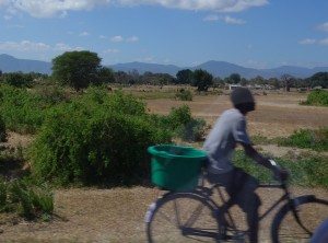 Banner image for the World Health Summit Regional Meeting 2020 - male cycling through the African bush land.