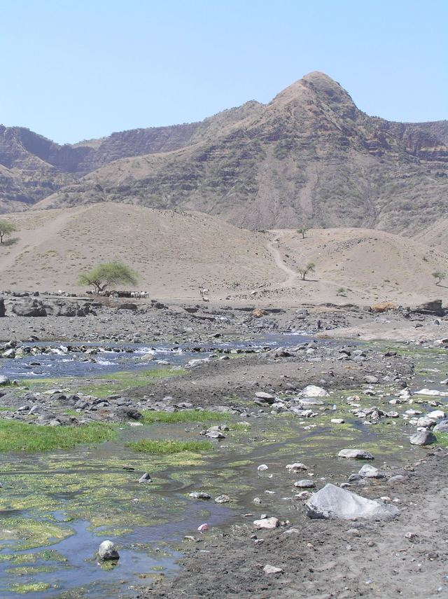 Focus On Tracking the movement of livestock - River at bottom of African mountain with a herd of cattle nearby
