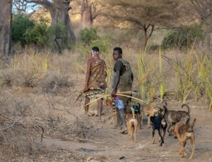 7th International Conference on Rabies in West Africa (RIWA)